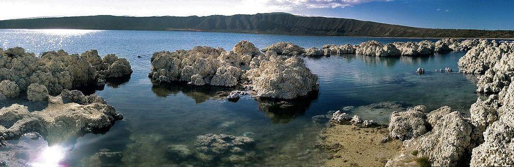 Alchichica Lake with stromatolites, Mexico