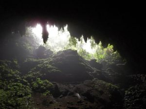 One of entrances in Camuy cave system, Puerto Rico