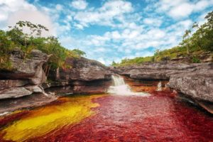 Caño Cristales with waterfall and the red Macarenia clavigera, Colombia. September 2012