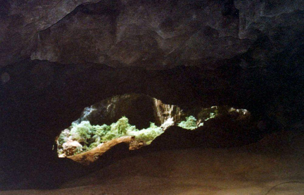 A view through the cave to an isolated patch of Madagasacaran jungle, Canyon Forestiere in Tsingy de Ankarana