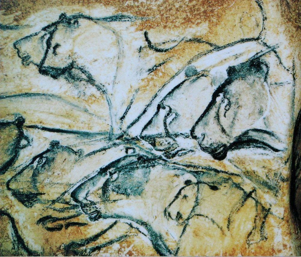 Grotte Chauvet, drawings of lionesses