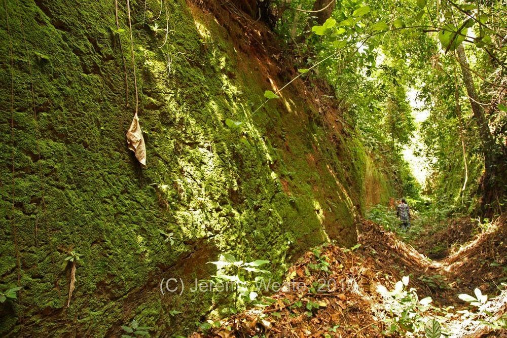The wall of Sungbo's Eredo ditch, Nigeria