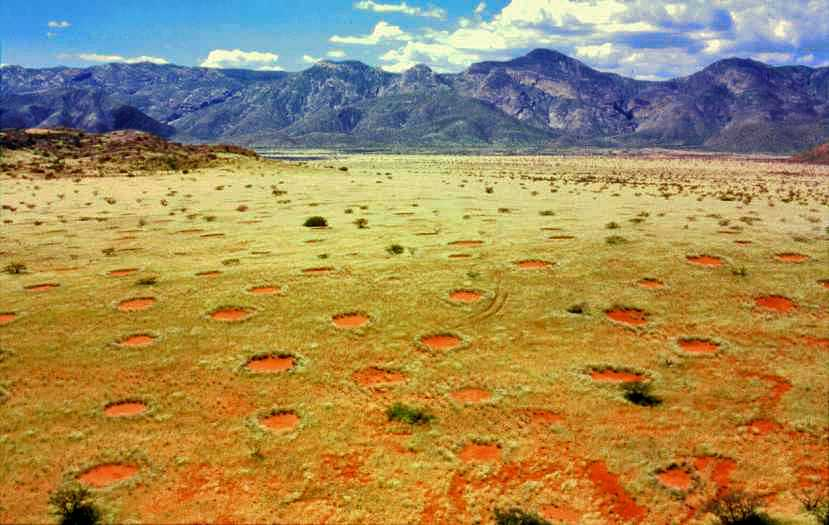 The mysterious fairy rings of Namibia