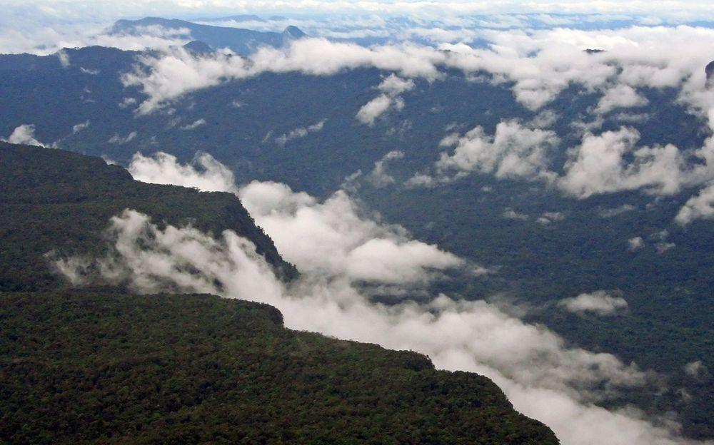 The immense forest and mountains in Guyana, near Kaieteur
