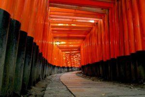 Torii in Fushimi Inari, Japan