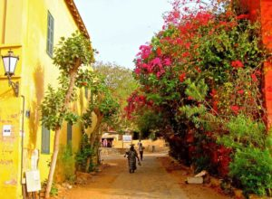 Street in Gorée, Senegal - town without cars