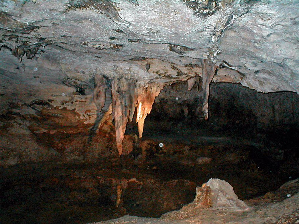 Stalactites in Hato Caves, Curaçao