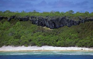 Shore of Henderson Island