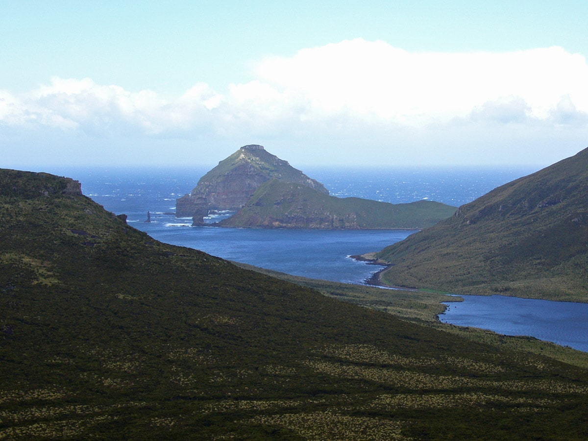Landscape, Campbell Island with Jacquemart Island in the background