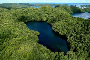 Jellyfish Lake from air with swarms of jellyfish visible, Palau
