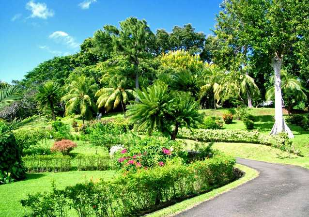 St. Vincent and Grenadines Botanic Gardens