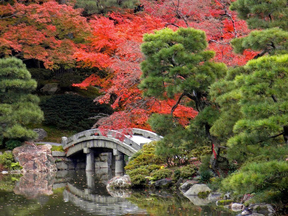 Kyoto Imperial Palace Gardens, Japan