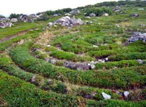 Bolshoi Zayatsky Island stone labyrinths, Russia