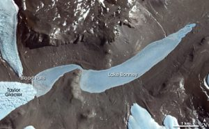 "Lake Bonney from satellite, Antarctica. Inscription ""Lake Bonney"" is on the eastern lobe."