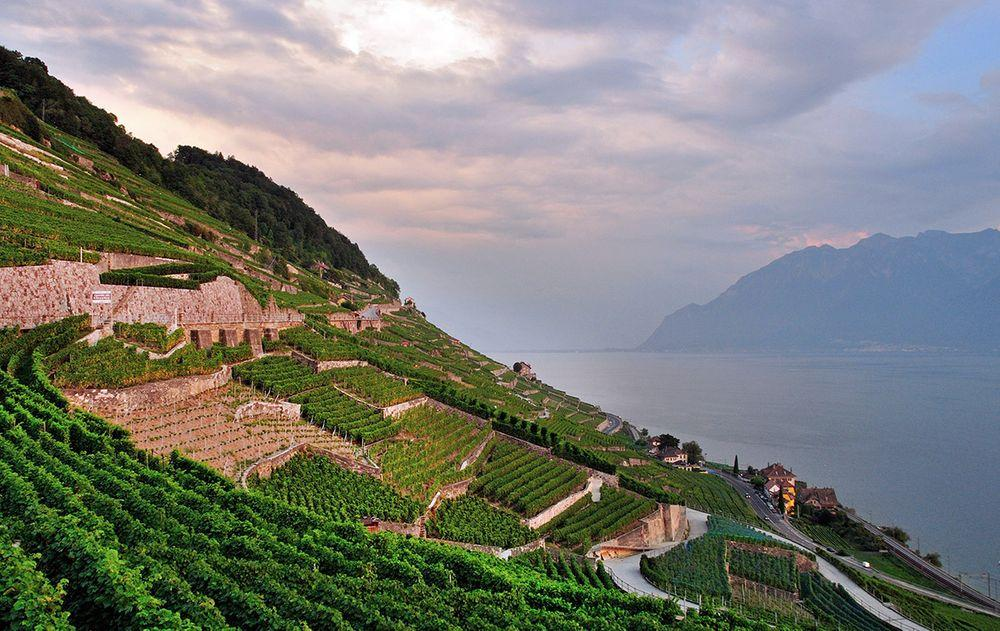 Lavaux vineyards, Switzerland