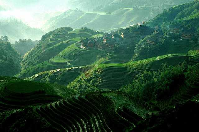 Longji rice paddies, Guangxi in China