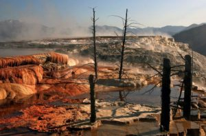 Mammoth Hot Springs, United States