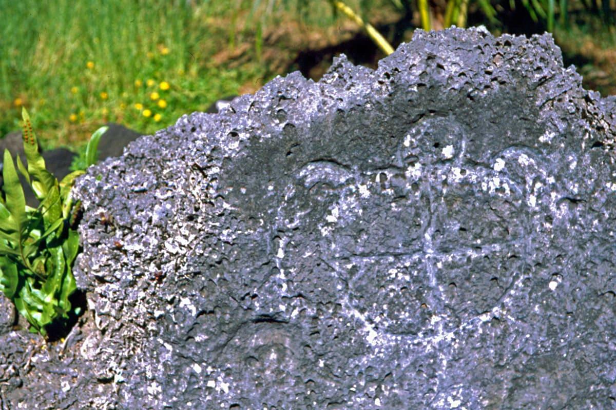 Marae Fare Opu in Leeward Islands, petroglyph