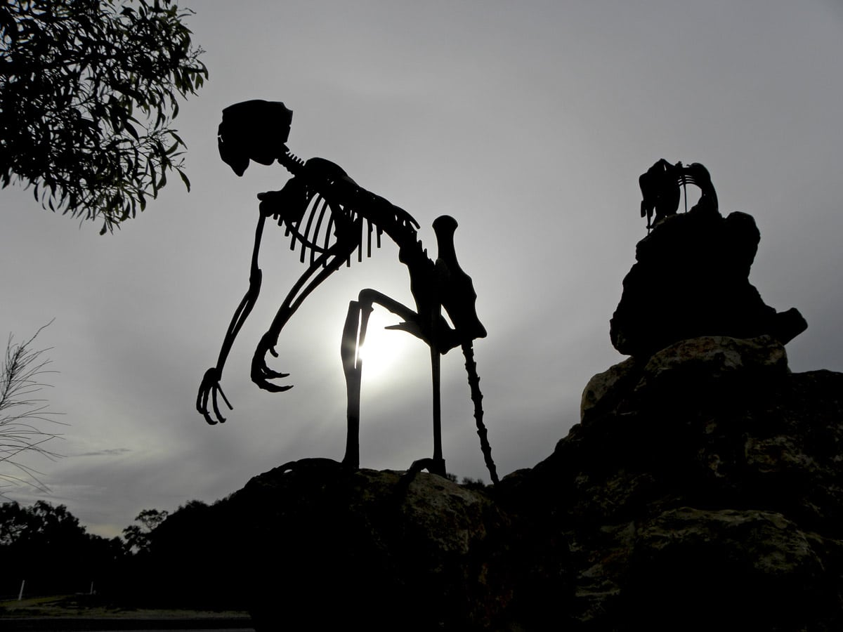 Skeleton of extinct marsupial, entrance of Naracoorte Cave in Australia