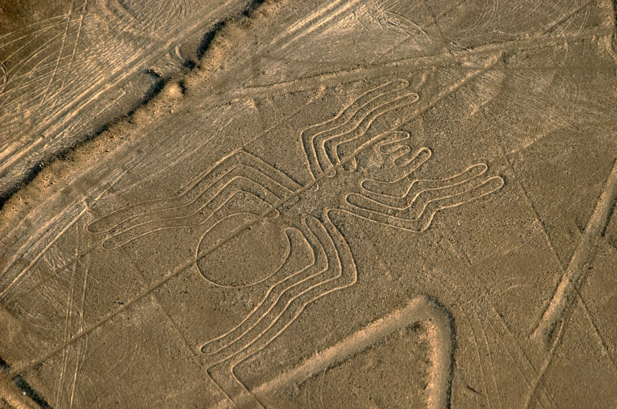 Nazca lines in Peru - drawing of spider