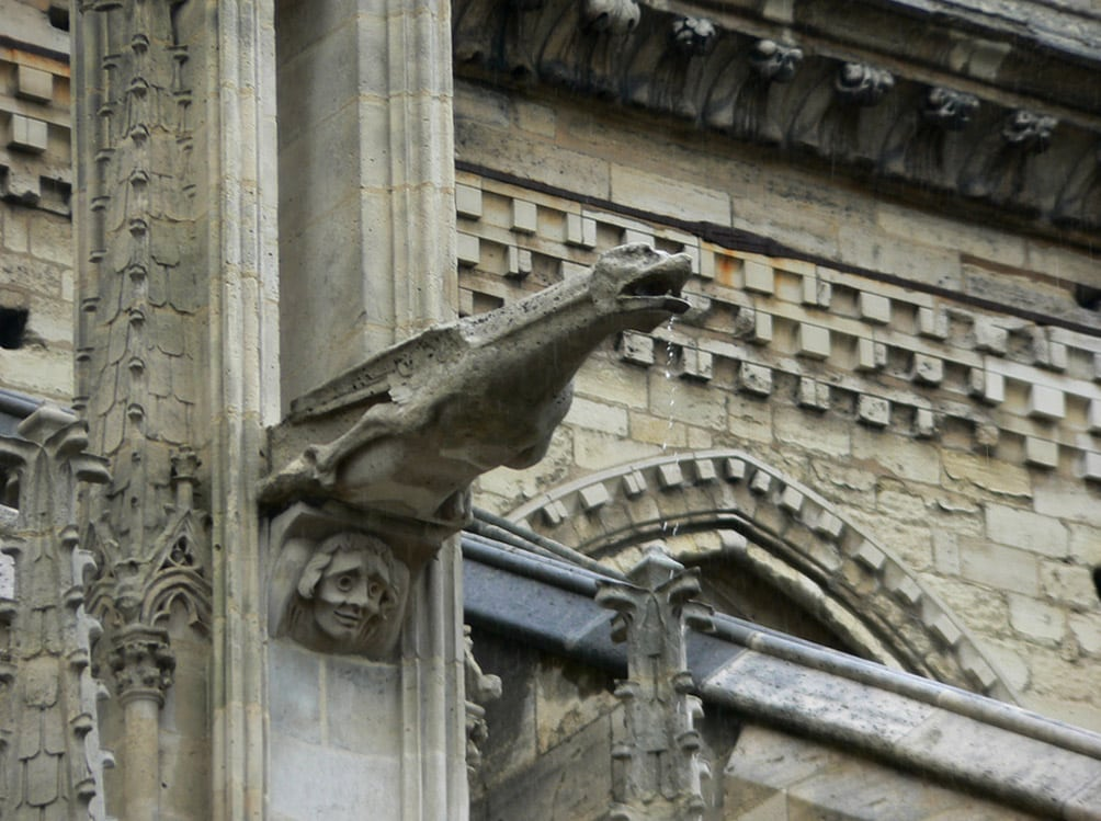 Gargoyle of Notre Dame Cathedral in action