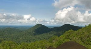 Sight from Nouragues Inselberg, French Guiana