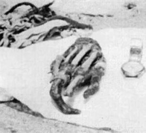 The mysterious hand in Pangboche Monastery - before it disappeared