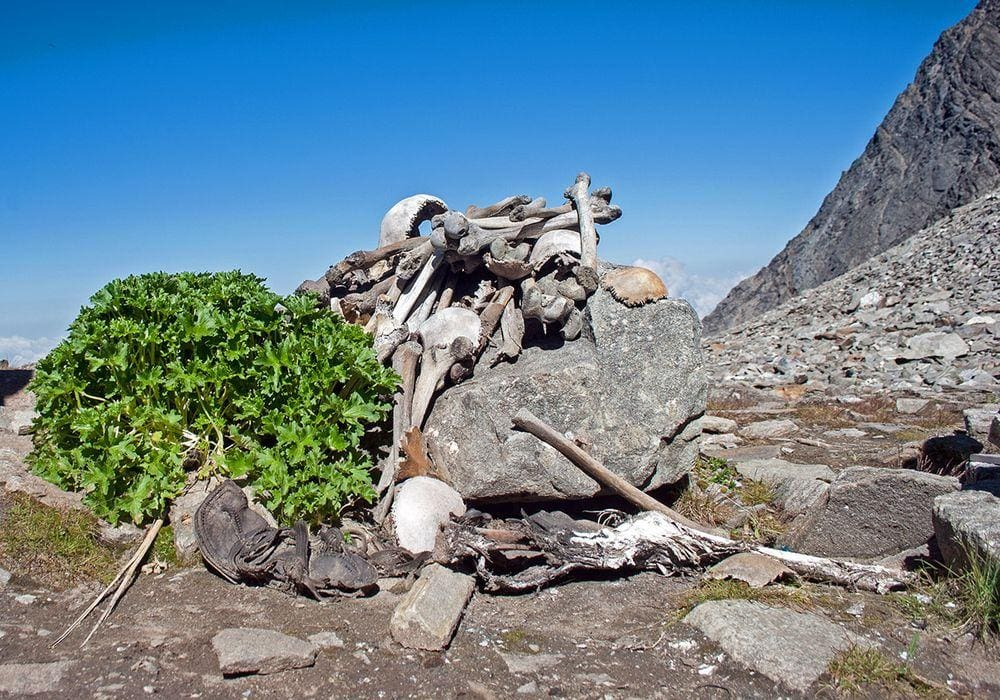 Human bones at the Roopkund Lake, India