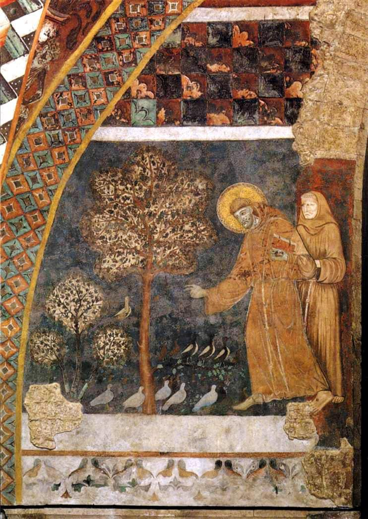 Assisi Basilica of San Francesco d'Assisi, St.Francis preaching to the birds, frescoe in the Lower Church