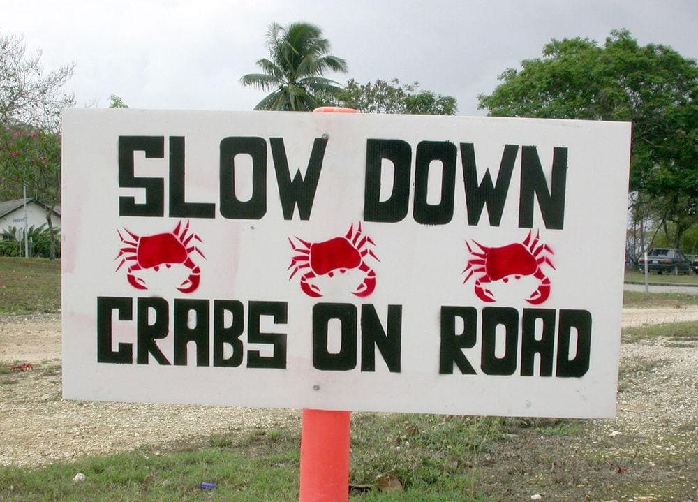 Sign informs about crab migration, Christmas Island