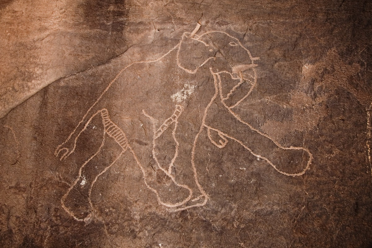 Engraving of elephant in Tadrart Acacus mountains. There are no elephants in Libya nowadays