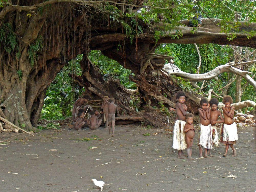 Traditional (kastom) village Tanna cannot be imagined without banyan tree. This is not the banyan in Lomteuheakal