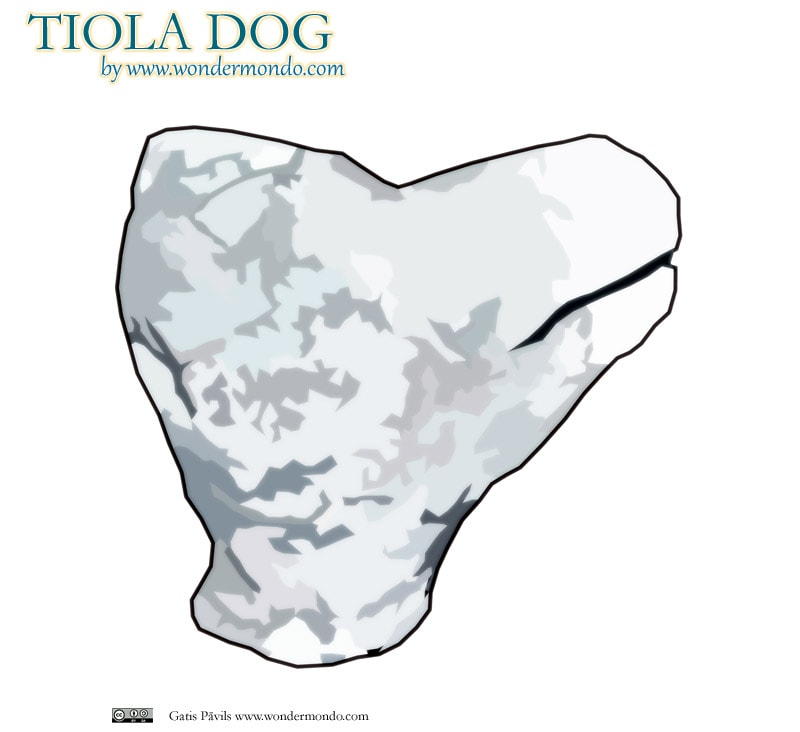 Head of Tiola dog, made of coral, Nusa Roviana fortress