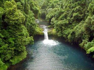 Rainforest and waterfall at Luba Crater in Bioko Island, Equatorial Guinea