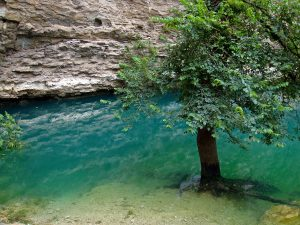 Fontaine de Vaucluse, very high water level