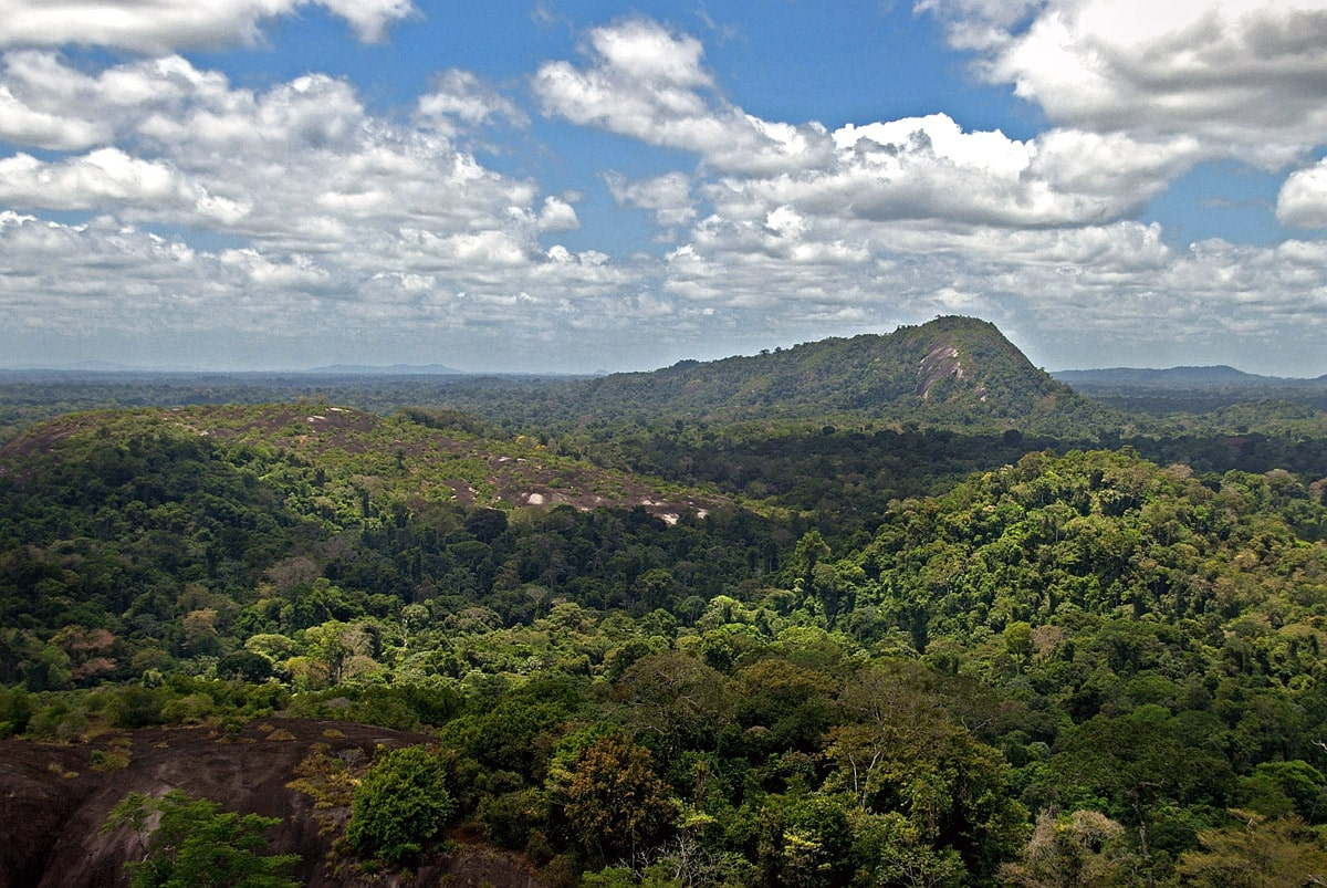 View from Voltzberg to the east, Suriname