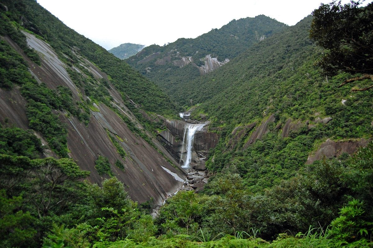 Senpiro Falls in the unique Yakushima Forest, Japan