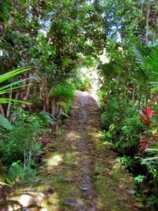 Ancient footpath, Yap in Micronesia