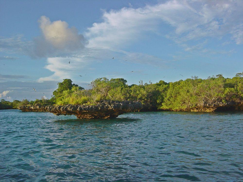 Aldabra Atoll, coral formations
