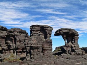 Formations on Mount Roraima