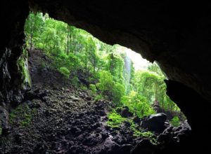 Garden of Eden as seen from Deer Cave, Sarawak