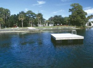 Hunter Spring, Crystal River