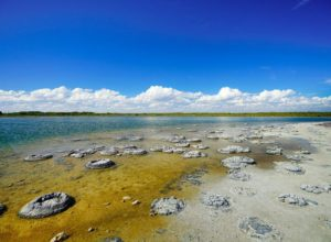 Lake Thetis with marine stromatolites