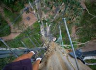 Climbing the Gloucester Tree