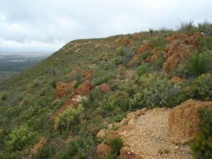 Mont Lesueur with laterite boulders