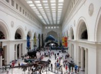 Field Museum of Natural History, the main hall