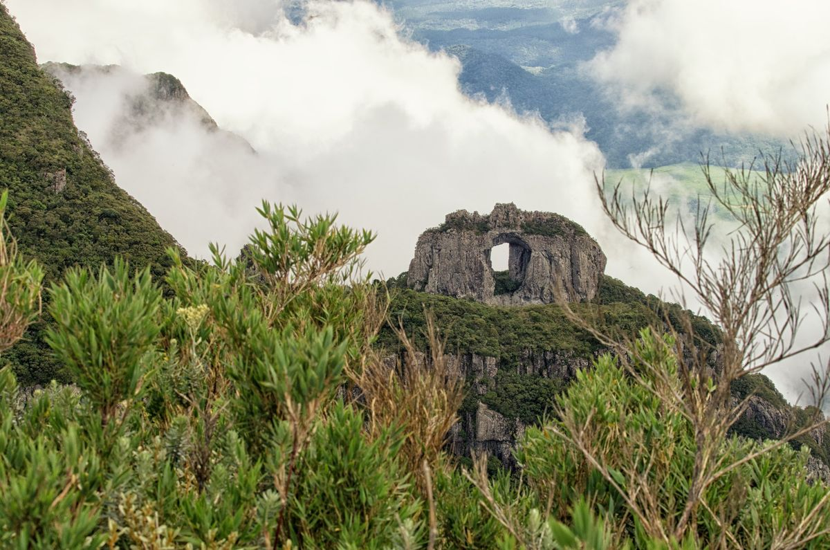 Pedra Furada - natural arch with forest in it