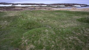 Traces of Viking structures in L'Anse aux Meadows