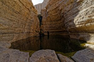 Ein Avdat canyon with a waterfall